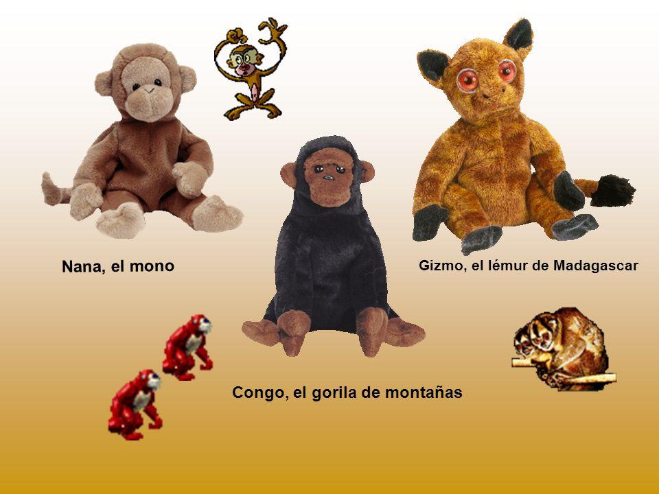 Congo, el gorila de montañas Gizmo, el lémur de Madagascar Nana, el mono