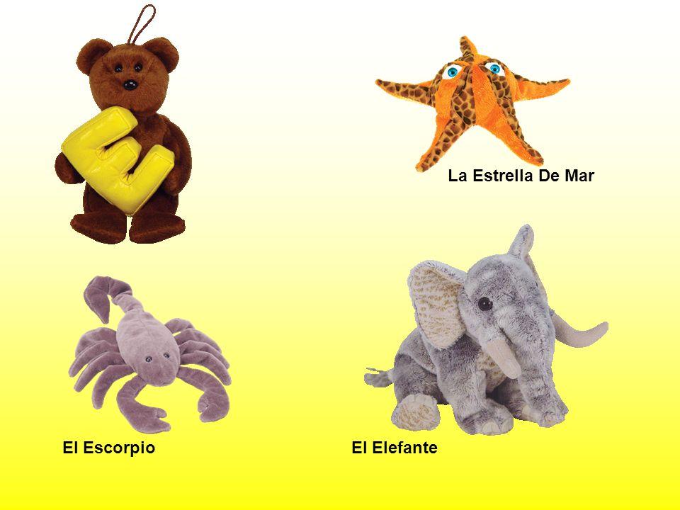 El ElefanteEl Escorpio La Estrella De Mar