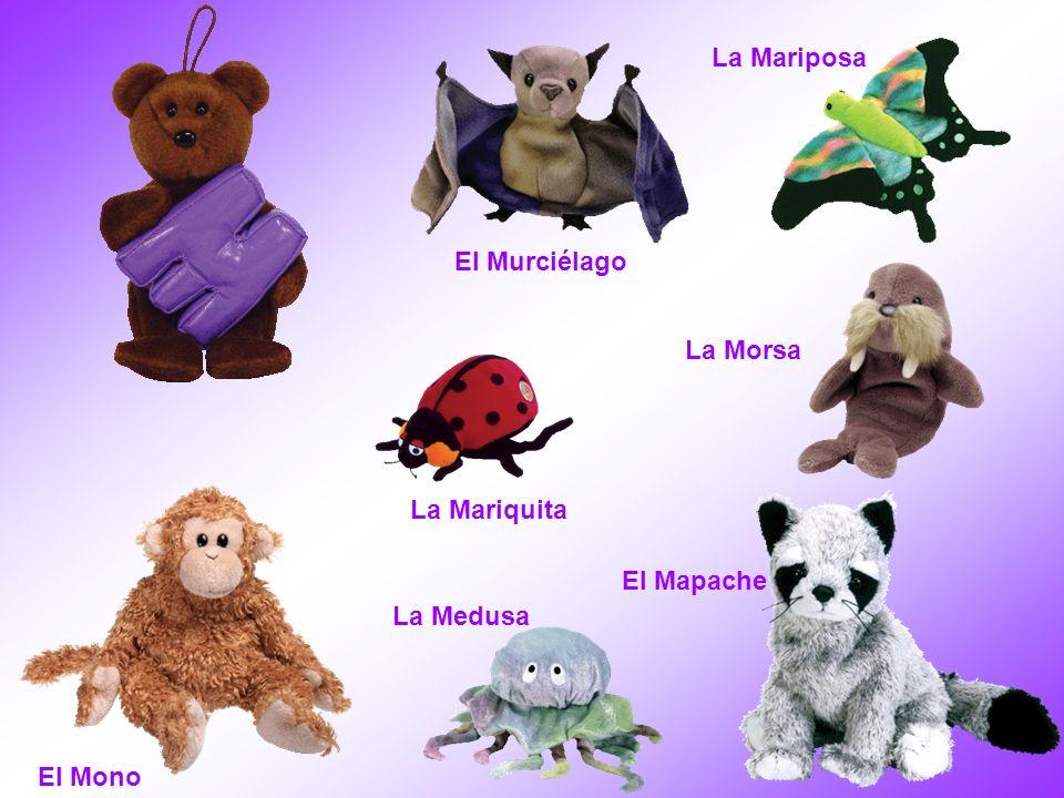 El Mono El Mapache El Murciélago La Mariquita La Mariposa La Medusa La Morsa