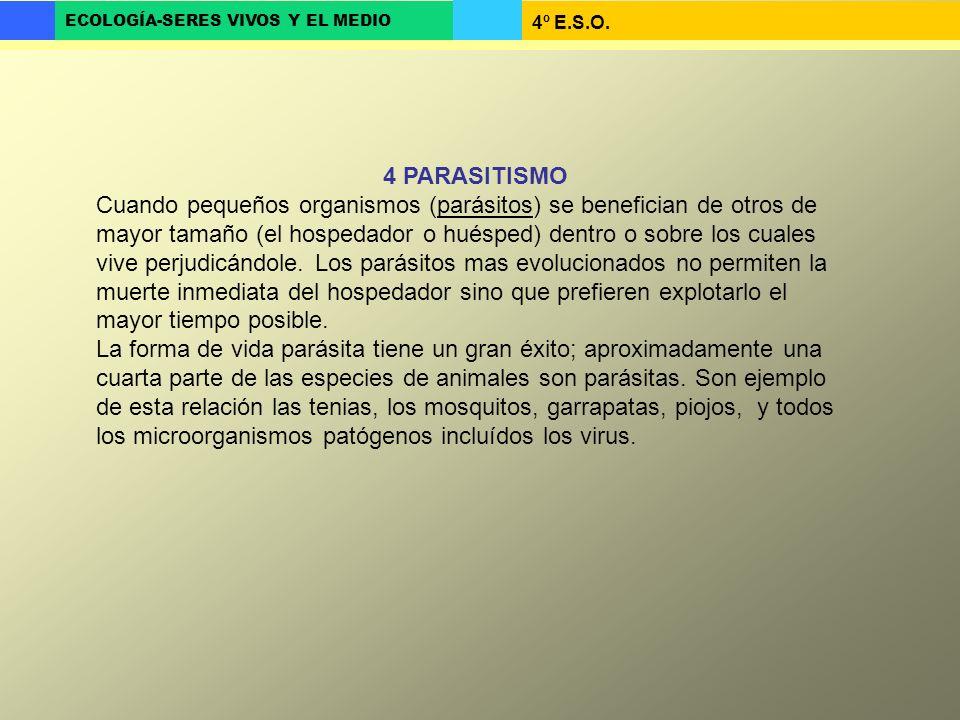 4º E.S.O. ECOLOGÍA-SERES VIVOS Y EL MEDIO 4 PARASITISMO Cuando pequeños organismos (parásitos) se benefician de otros de mayor tamaño (el hospedador o