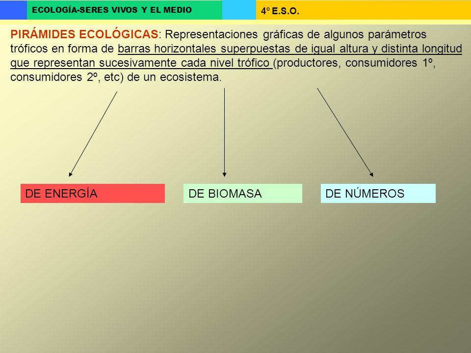 4º E.S.O. ECOLOGÍA-SERES VIVOS Y EL MEDIO PIRÁMIDES ECOLÓGICAS: Representaciones gráficas de algunos parámetros tróficos en forma de barras horizontal