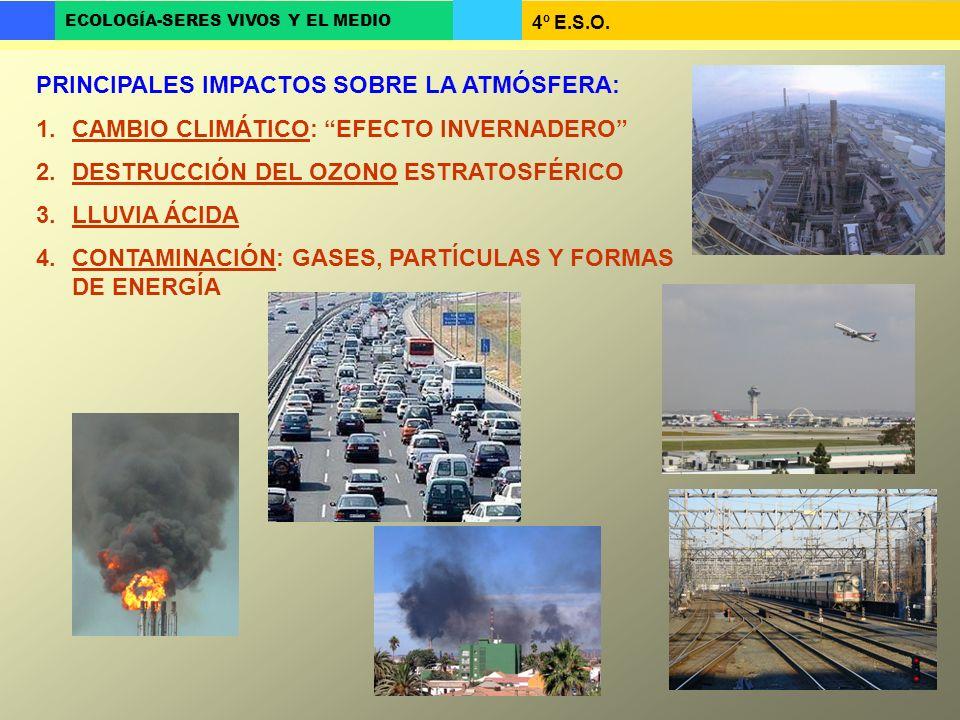 4º E.S.O. ECOLOGÍA-SERES VIVOS Y EL MEDIO PRINCIPALES IMPACTOS SOBRE LA ATMÓSFERA: 1.CAMBIO CLIMÁTICO: EFECTO INVERNADERO 2.DESTRUCCIÓN DEL OZONO ESTR