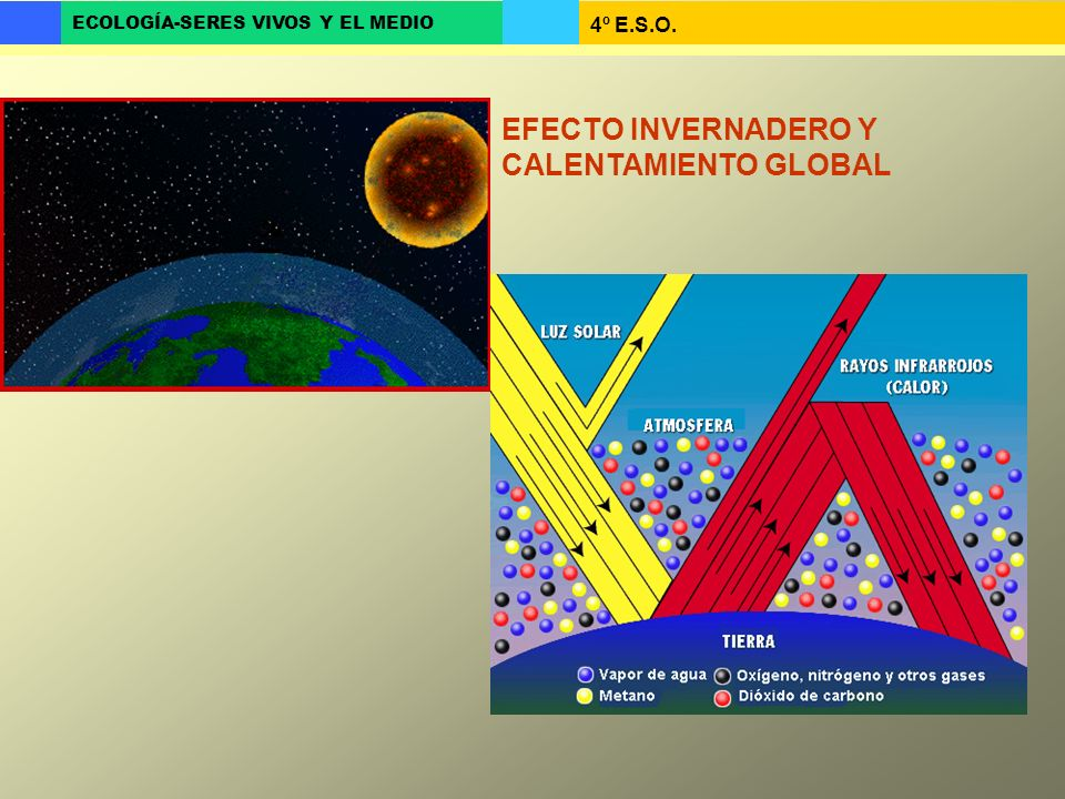 4º E.S.O. ECOLOGÍA-SERES VIVOS Y EL MEDIO EFECTO INVERNADERO Y CALENTAMIENTO GLOBAL