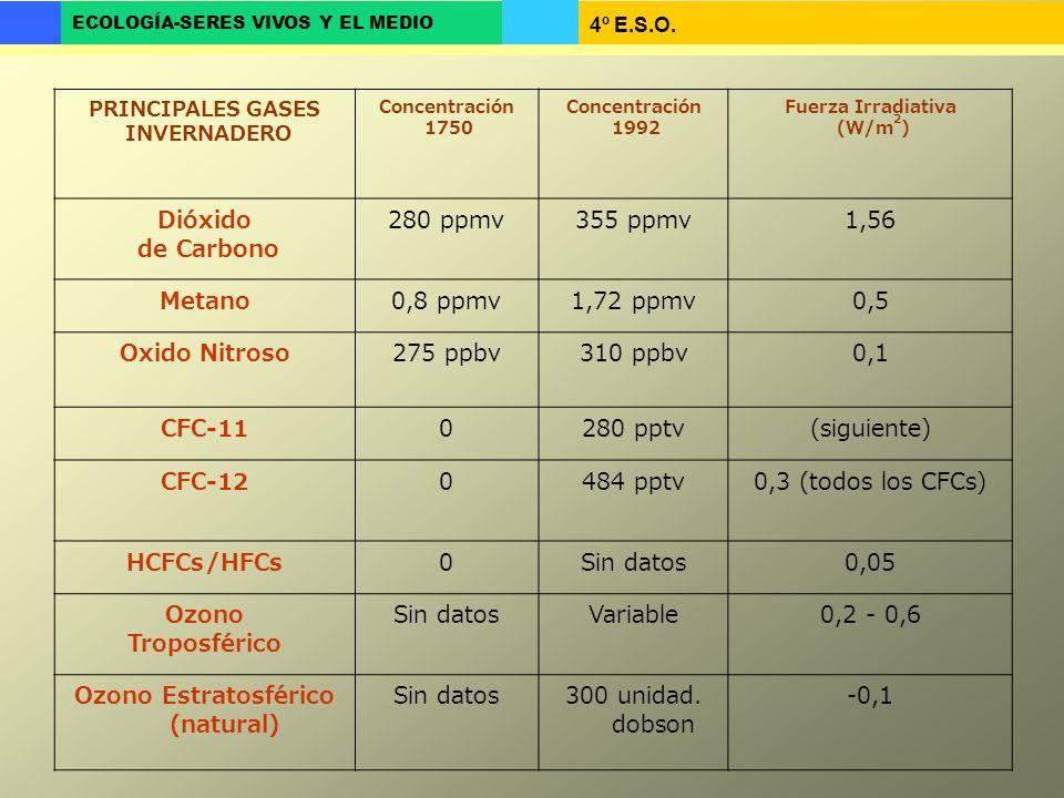 4º E.S.O. ECOLOGÍA-SERES VIVOS Y EL MEDIO PRINCIPALES GASES INVERNADERO Concentración 1750 Concentración 1992 Fuerza Irradiativa (W/m 2 ) Dióxido de C