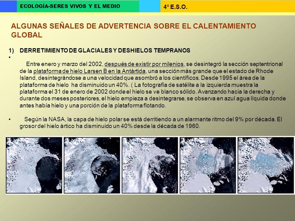 4º E.S.O. ECOLOGÍA-SERES VIVOS Y EL MEDIO ALGUNAS SEÑALES DE ADVERTENCIA SOBRE EL CALENTAMIENTO GLOBAL 1)DERRETIMIENTO DE GLACIALES Y DESHIELOS TEMPRA