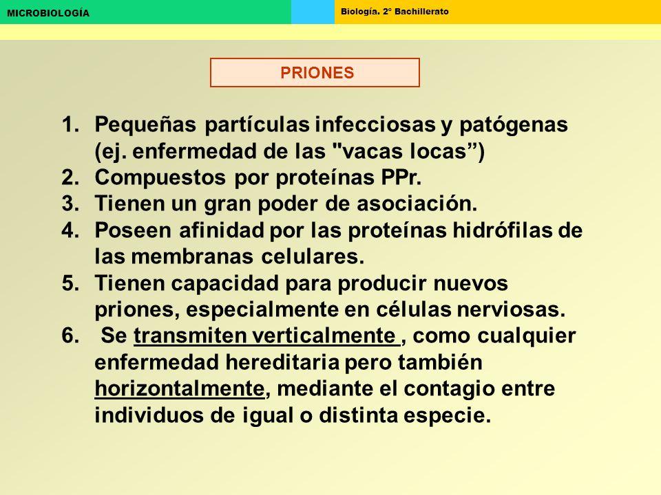 Biología. 2º Bachillerato MICROBIOLOGÍA 1.Pequeñas partículas infecciosas y patógenas (ej. enfermedad de las