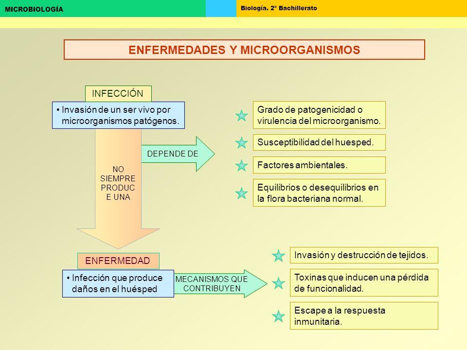 Biología. 2º Bachillerato MICROBIOLOGÍA MECANISMOS QUE CONTRIBUYEN DEPENDE DE NO SIEMPRE PRODUC E UNA Infección que produce daños en el huésped Invasi