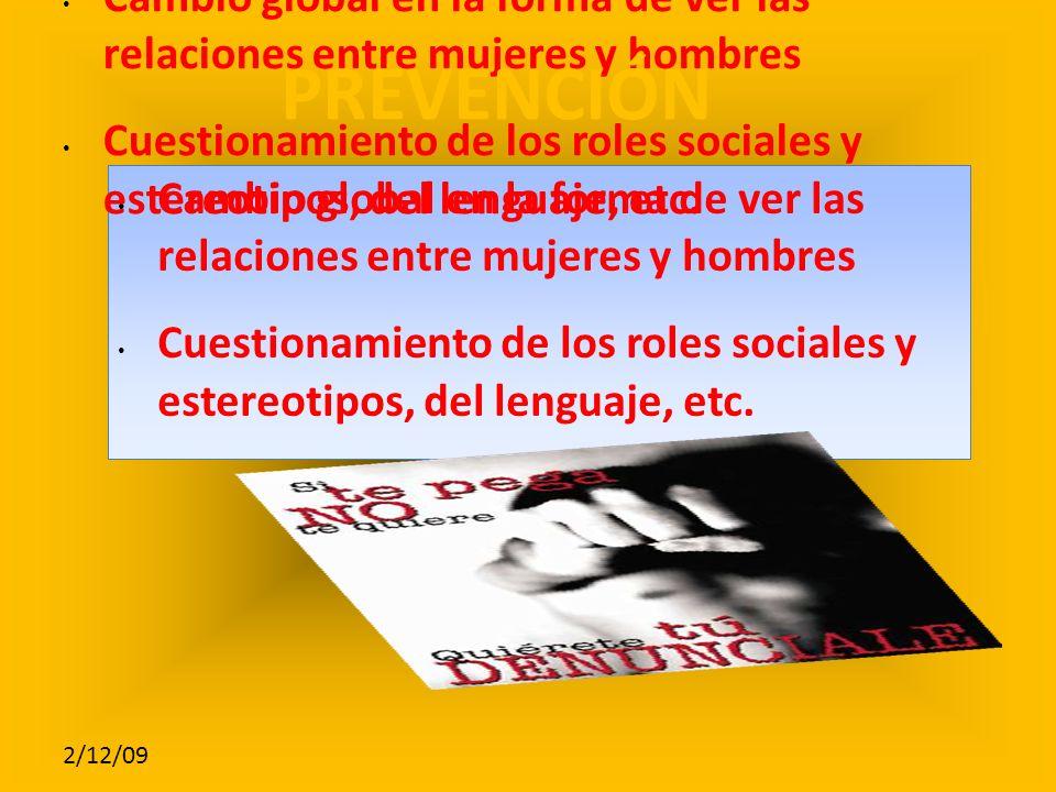 2/12/09 Cambio global en la forma de ver las relaciones entre mujeres y hombres Cuestionamiento de los roles sociales y estereotipos, del lenguaje, etc.