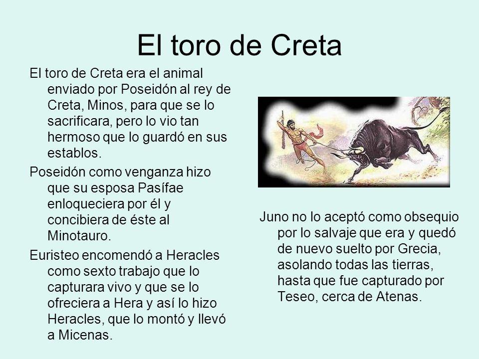 El toro de Creta: Representaciones