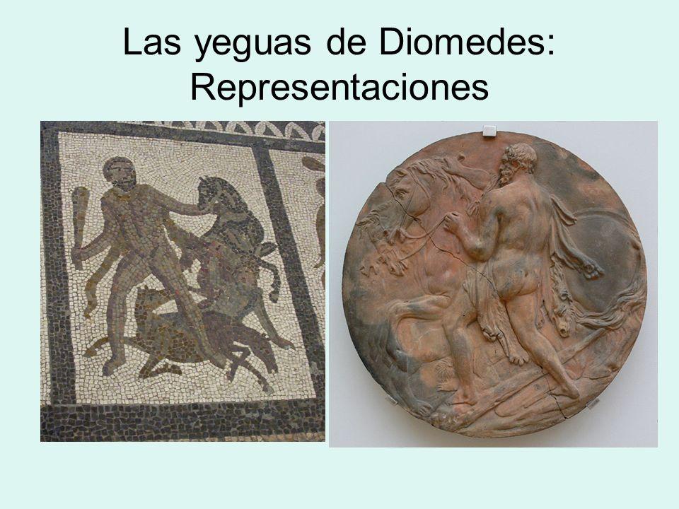 El cinturón de Hipólita El noveno trabajo consistió en conseguir el cinturón de Hipólita, reina de las amazonas, que le había regalado su padre Ares, el dios de la guerra.
