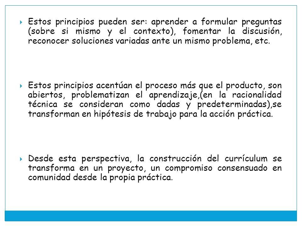 Estos principios pueden ser: aprender a formular preguntas (sobre si mismo y el contexto), fomentar la discusión, reconocer soluciones variadas ante un mismo problema, etc.
