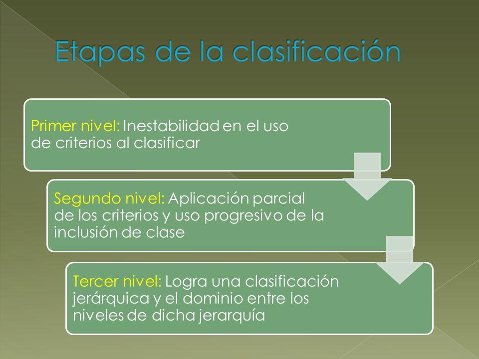 Primer nivel: Inestabilidad en el uso de criterios al clasificar Segundo nivel: Aplicación parcial de los criterios y uso progresivo de la inclusión d