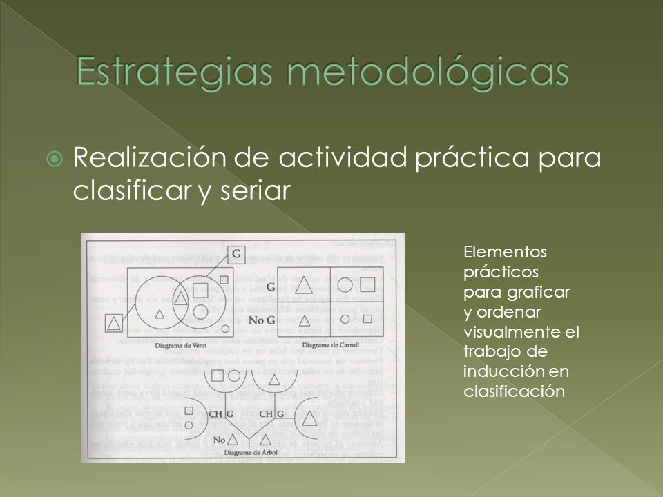 Realización de actividad práctica para clasificar y seriar Elementos prácticos para graficar y ordenar visualmente el trabajo de inducción en clasific