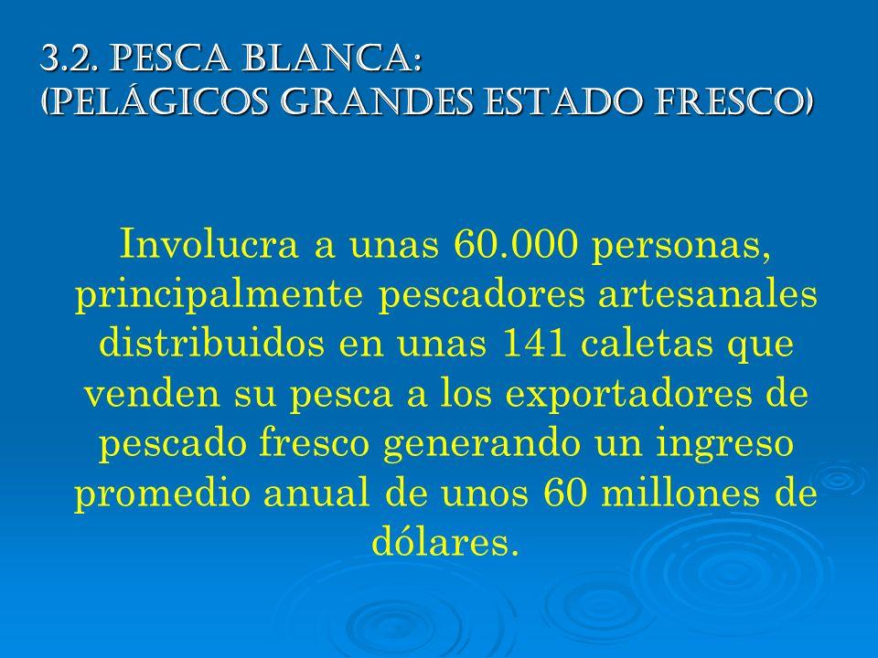 3.2. PESCA BLANCA: (Pelágicos Grandes Estado Fresco) Involucra a unas 60.000 personas, principalmente pescadores artesanales distribuidos en unas 141