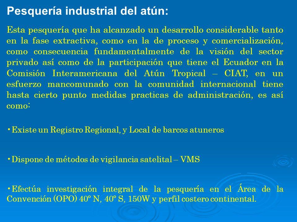 Pesquería industrial del atún: Esta pesquería que ha alcanzado un desarrollo considerable tanto en la fase extractiva, como en la de proceso y comerci