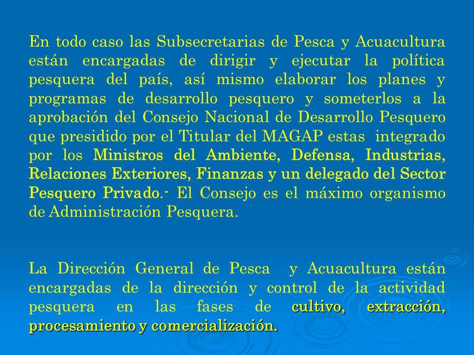 En todo caso las Subsecretarias de Pesca y Acuacultura están encargadas de dirigir y ejecutar la política pesquera del país, así mismo elaborar los pl