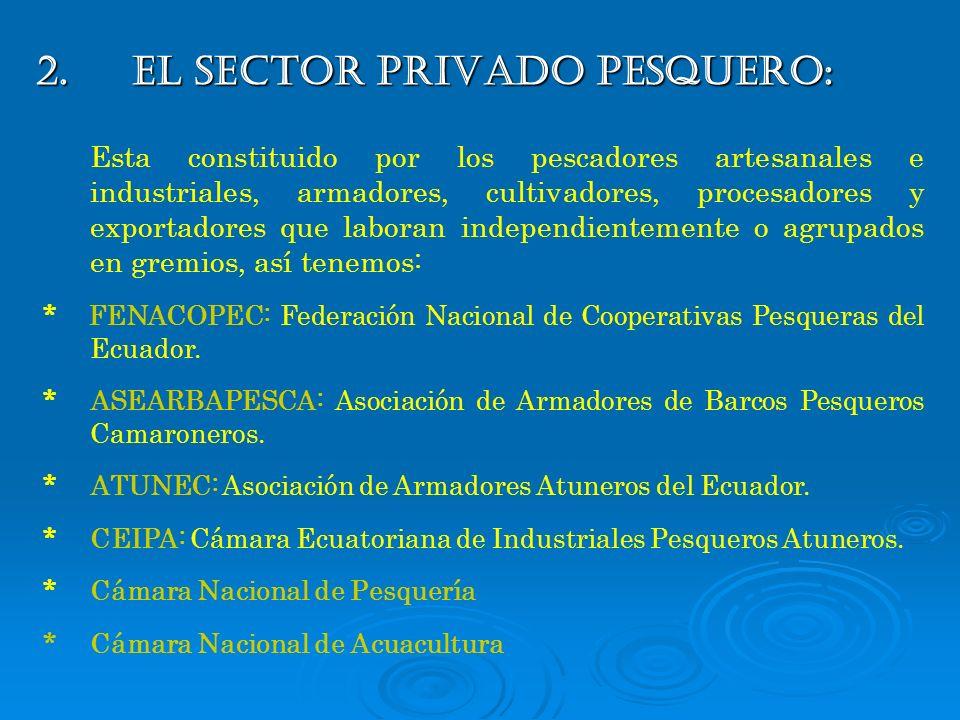 2.EL SECTOR PRIVADO PESQUERO: Esta constituido por los pescadores artesanales e industriales, armadores, cultivadores, procesadores y exportadores que