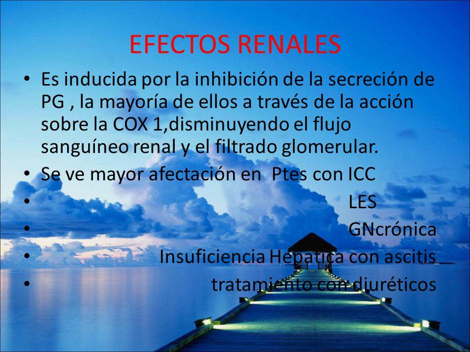 EFECTOS RENALES Es inducida por la inhibición de la secreción de PG, la mayoría de ellos a través de la acción sobre la COX 1,disminuyendo el flujo sa