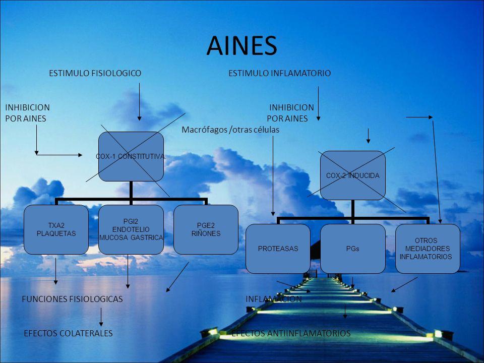 AINES COX-1 CONSTITUTIVA. TXA2 PLAQUETAS PGI2 ENDOTELIO MUCOSA GASTRICA PGE2 RIÑONES COX-2 INDUCIDA PROTEASASPGs OTROS MEDIADORES INFLAMATORIOS ESTIMU