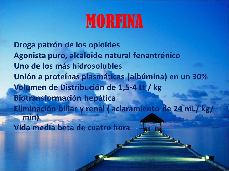 MORFINA Droga patrón de los opioides Agonista puro, alcaloide natural fenantrénico Uno de los más hidrosolubles Unión a proteínas plasmáticas (albúmin