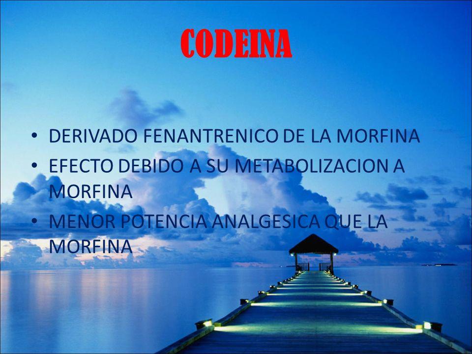 CODEINA DERIVADO FENANTRENICO DE LA MORFINA EFECTO DEBIDO A SU METABOLIZACION A MORFINA MENOR POTENCIA ANALGESICA QUE LA MORFINA
