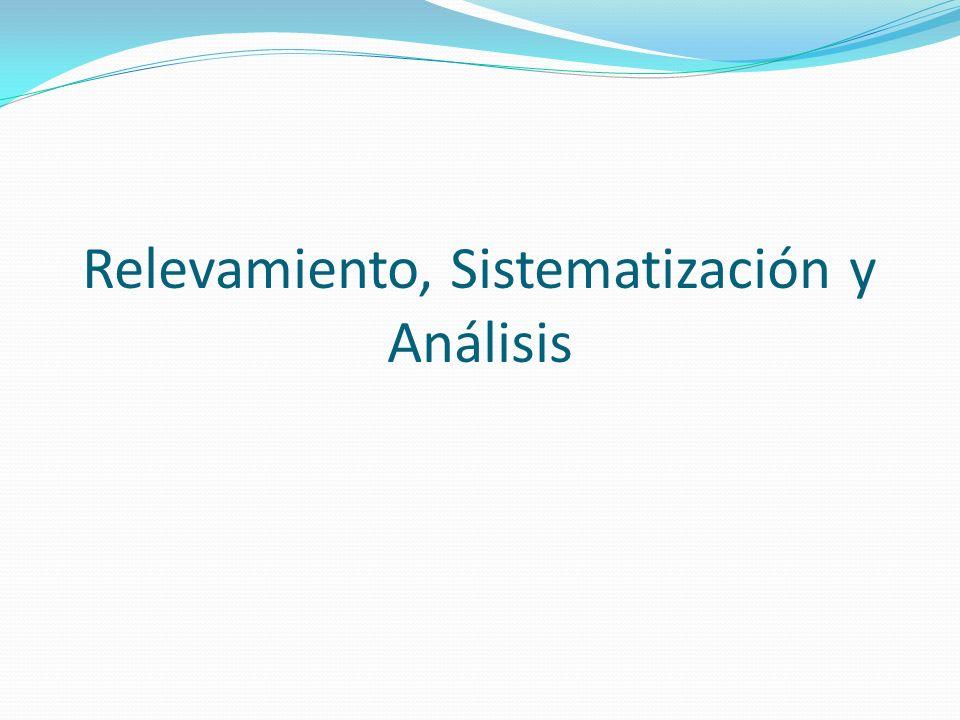 Relevamiento, Sistematización y Análisis