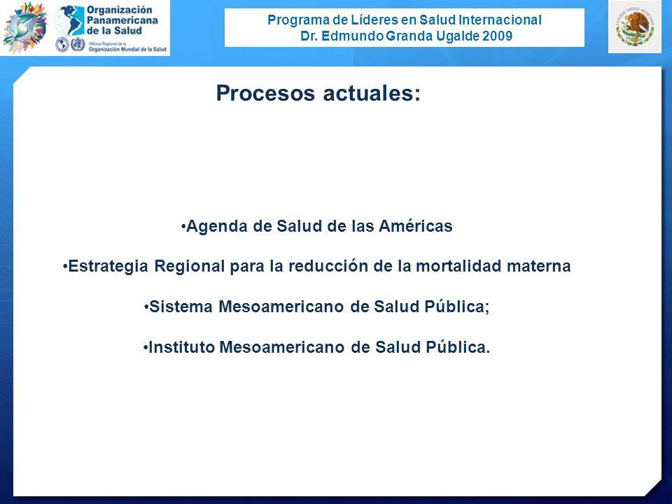 Programa de Líderes en Salud Internacional Dr. Edmundo Granda Ugalde 2009 Agenda de Salud de las Américas Estrategia Regional para la reducción de la