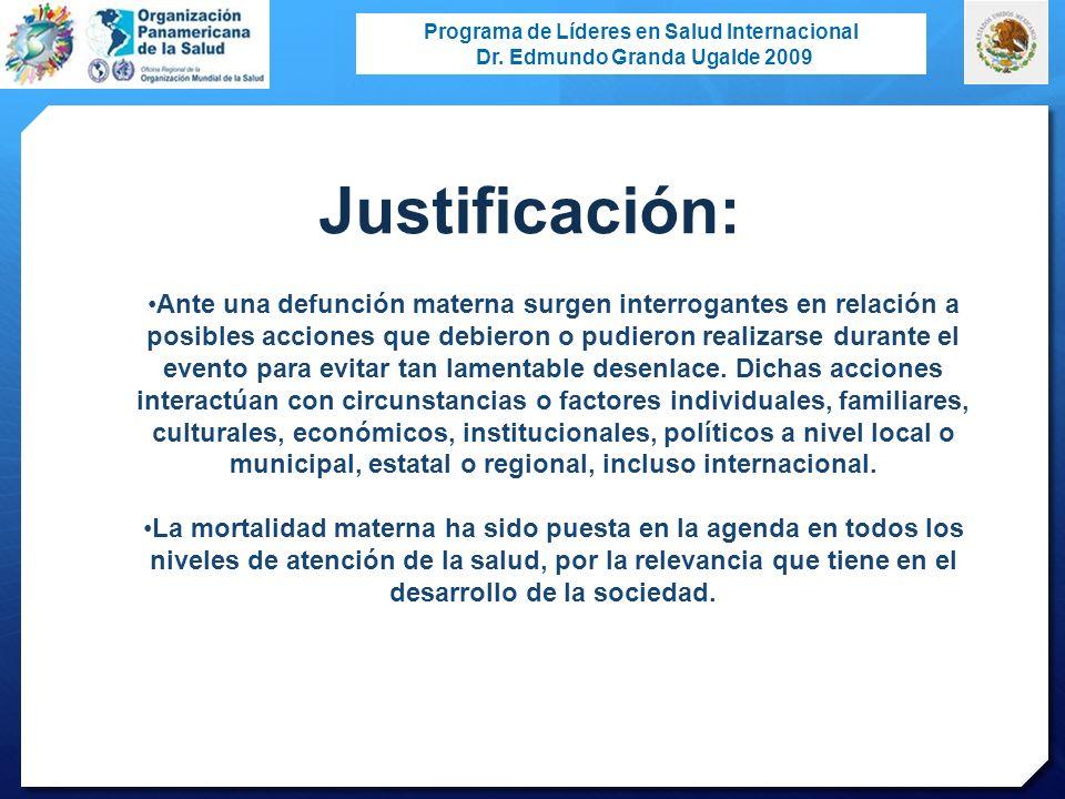 Programa de Líderes en Salud Internacional Dr. Edmundo Granda Ugalde 2009 Ante una defunción materna surgen interrogantes en relación a posibles accio