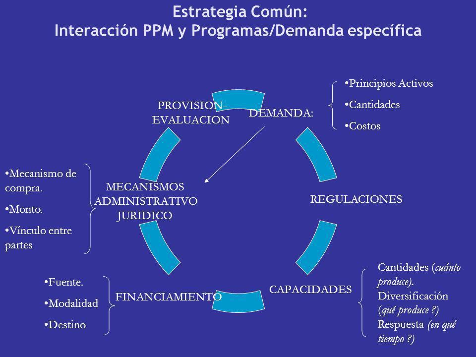 Estrategia Común: Interacción PPM y Programas/Demanda específica DEMANDA: CAPACIDADES MECANISMOS ADMINISTRATIVO JURIDICO PROVISION- EVALUACION Princip