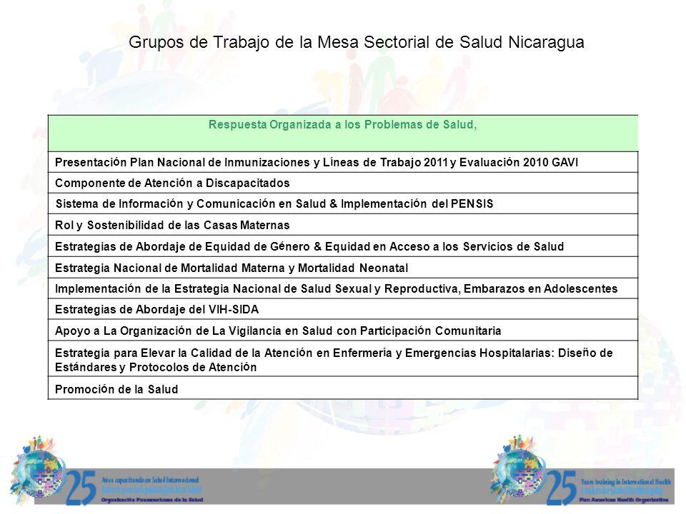 Respuesta Organizada a los Problemas de Salud, Presentación Plan Nacional de Inmunizaciones y Líneas de Trabajo 2011 y Evaluación 2010 GAVI Componente