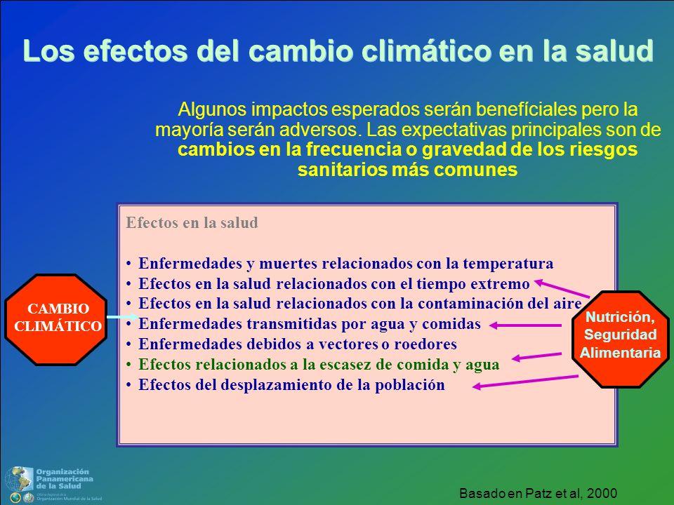 Efectos en la salud Enfermedades y muertes relacionados con la temperatura Efectos en la salud relacionados con el tiempo extremo Efectos en la salud