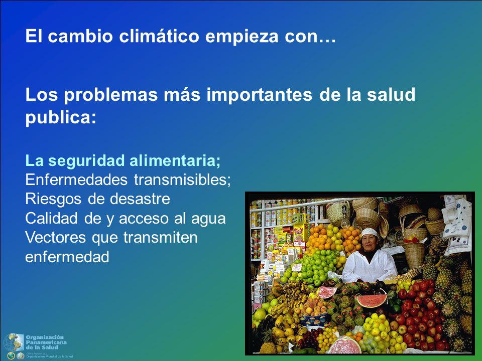 Los problemas más importantes de la salud publica: La seguridad alimentaria; Enfermedades transmisibles; Riesgos de desastre Calidad de y acceso al ag