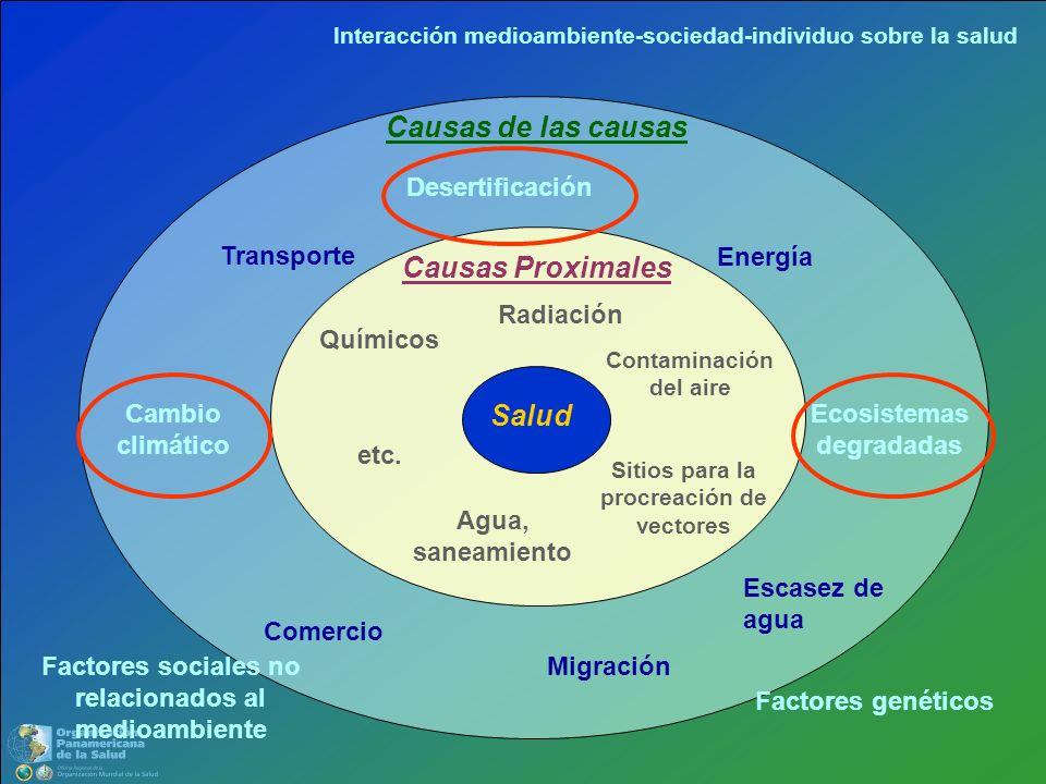 Salud Causas Proximales Contaminación del aire Agua, saneamiento Químicos Sitios para la procreación de vectores Radiación etc. Causas de las causas C
