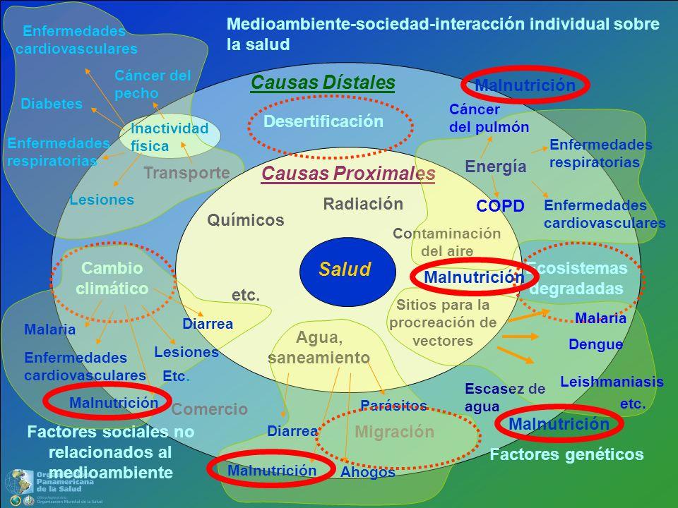 Salud Causas Proximales Contaminación del aire Agua, saneamiento Químicos Sitios para la procreación de vectores Radiación etc. Causas Dístales Comerc