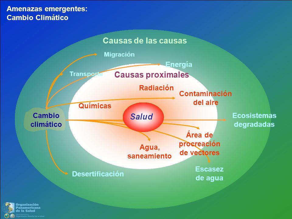 Causas proximales Causas de las causas Ecosistemas degradadas Migración Desertificación Cambio climático Escasez de agua Energía Transporte Contaminac