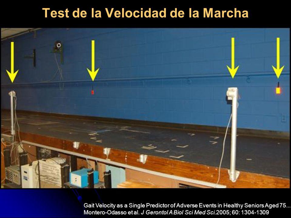 Test de la Velocidad de la Marcha Gait Velocity as a Single Predictor of Adverse Events in Healthy Seniors Aged 75... Montero-Odasso et al. J Gerontol
