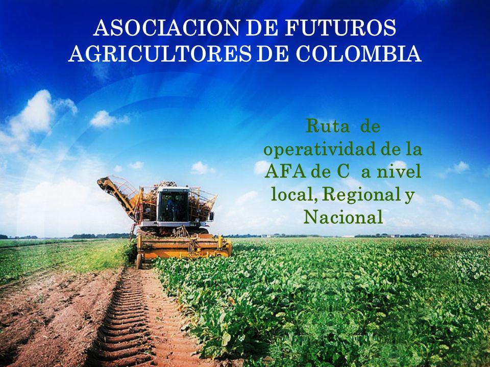 ASOCIACION DE FUTUROS AGRICULTORES DE COLOMBIA Ruta de operatividad de la AFA de C a nivel local, Regional y Nacional