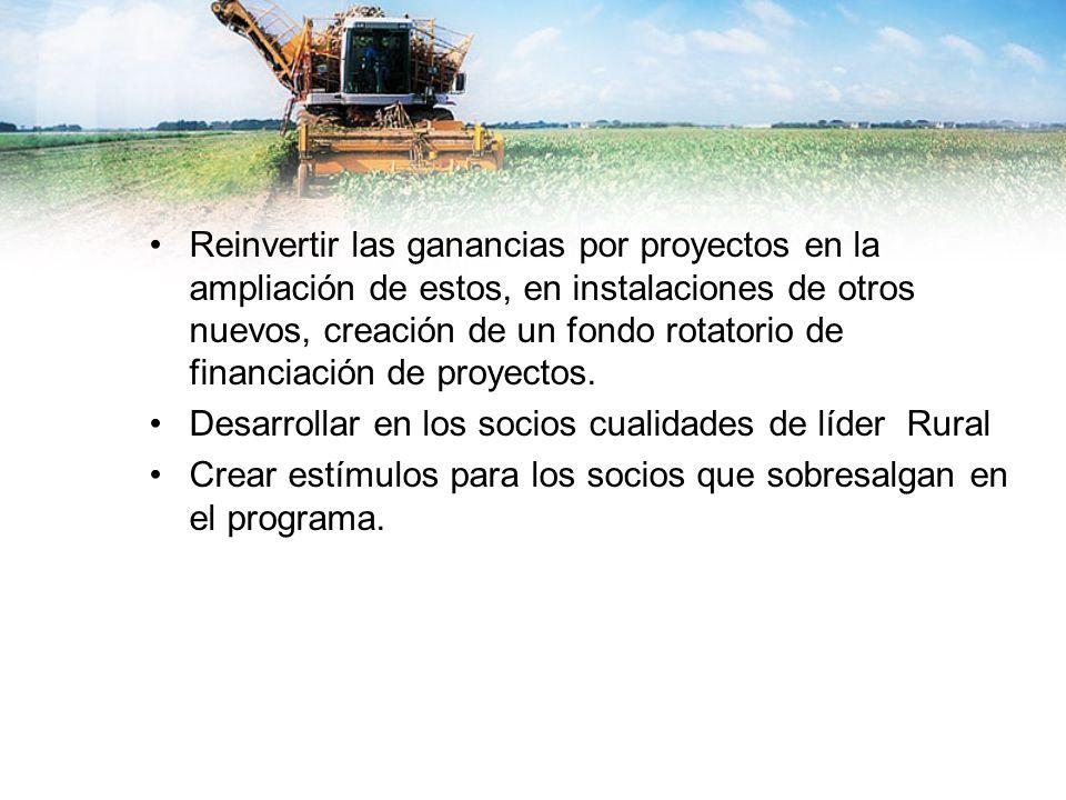 Reinvertir las ganancias por proyectos en la ampliación de estos, en instalaciones de otros nuevos, creación de un fondo rotatorio de financiación de