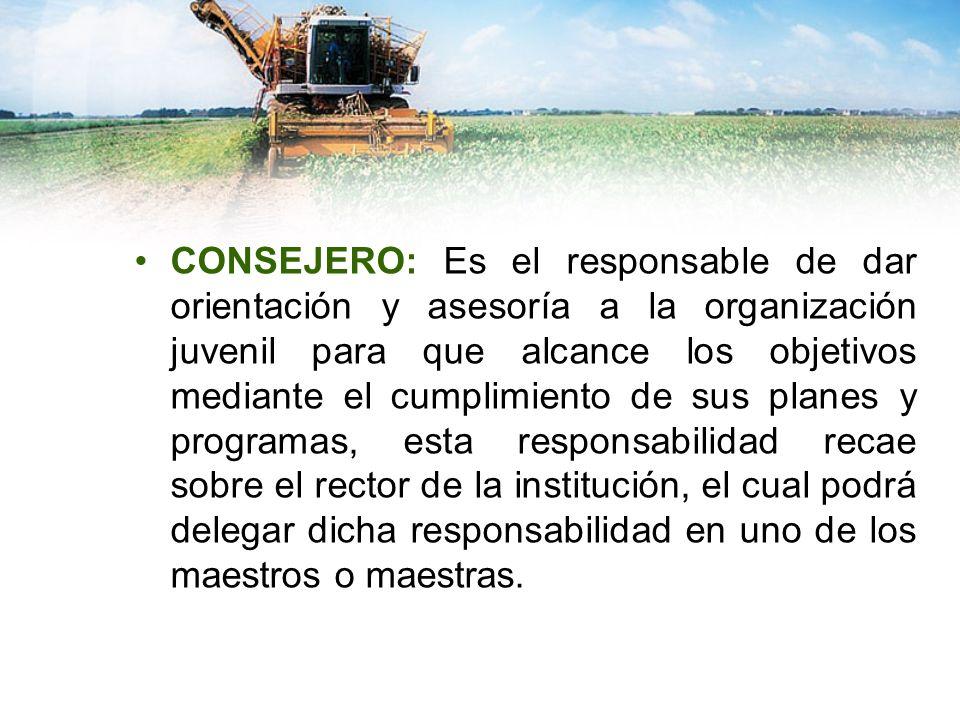CONSEJERO: Es el responsable de dar orientación y asesoría a la organización juvenil para que alcance los objetivos mediante el cumplimiento de sus pl