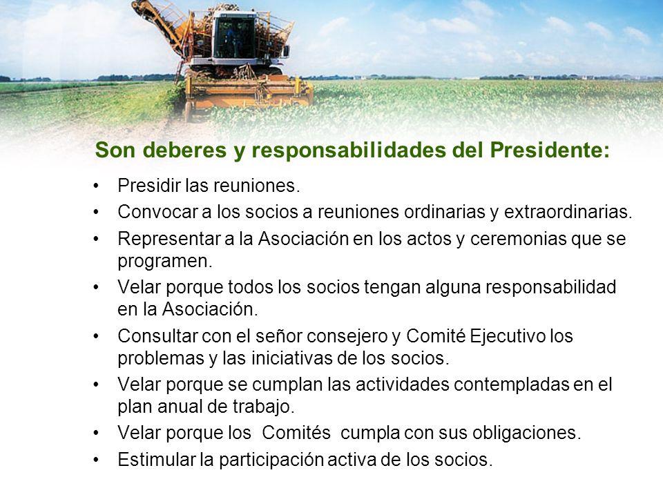 Son deberes y responsabilidades del Presidente: Presidir las reuniones. Convocar a los socios a reuniones ordinarias y extraordinarias. Representar a