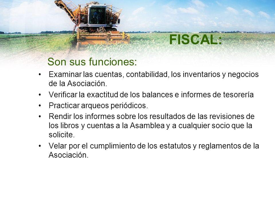 FISCAL: Son sus funciones: Examinar las cuentas, contabilidad, los inventarios y negocios de la Asociación. Verificar la exactitud de los balances e i