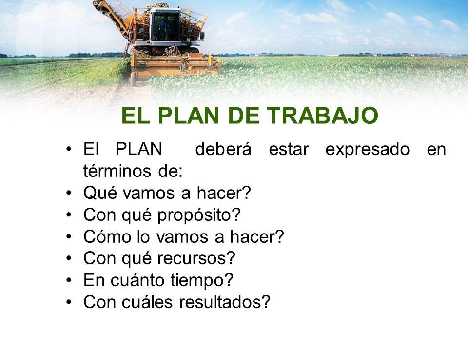 EL PLAN DE TRABAJO El PLAN deberá estar expresado en términos de: Qué vamos a hacer? Con qué propósito? Cómo lo vamos a hacer? Con qué recursos? En cu