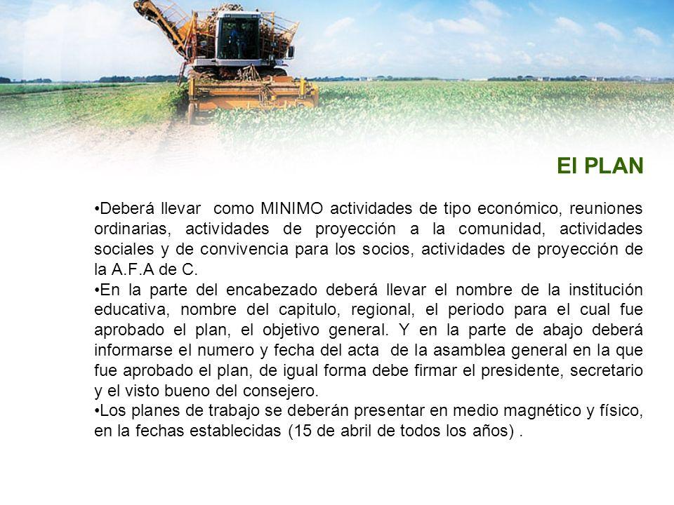 El PLAN Deberá llevar como MINIMO actividades de tipo económico, reuniones ordinarias, actividades de proyección a la comunidad, actividades sociales