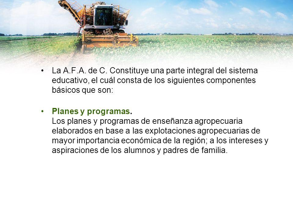La A.F.A. de C. Constituye una parte integral del sistema educativo, el cuál consta de los siguientes componentes básicos que son: Planes y programas.
