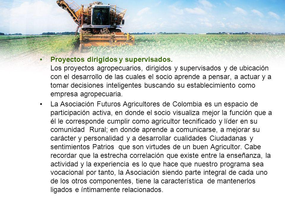 Proyectos dirigidos y supervisados. Los proyectos agropecuarios, dirigidos y supervisados y de ubicación con el desarrollo de las cuales el socio apre