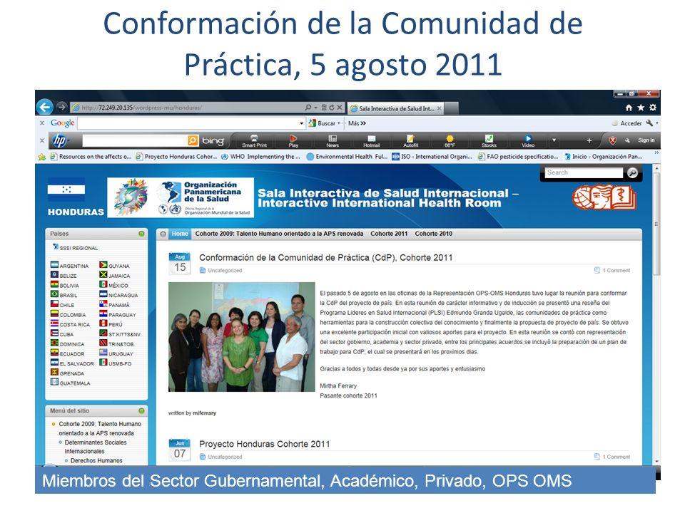 Conformación de la Comunidad de Práctica, 5 agosto 2011 Miembros del Sector Gubernamental, Académico, Privado, OPS OMS