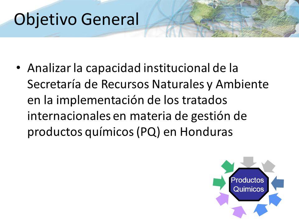 Analizar la capacidad institucional de la Secretaría de Recursos Naturales y Ambiente en la implementación de los tratados internacionales en materia de gestión de productos químicos (PQ) en Honduras Objetivo General Productos Quimicos