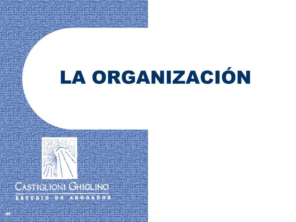 LA ORGANIZACIÓN 45