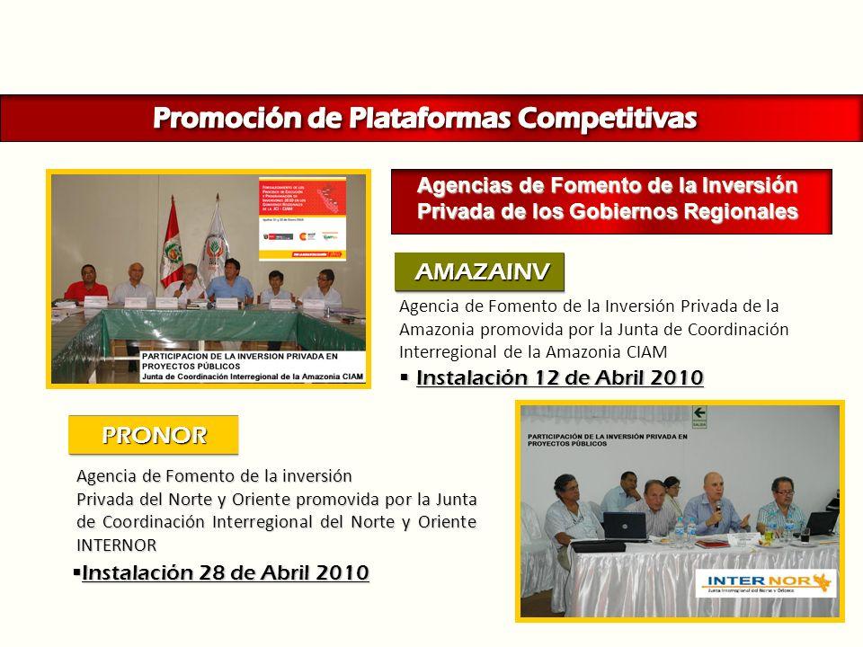 Instalación 12 de Abril 2010Instalación 12 de Abril 2010 Agencia de Fomento de la inversión Privada del Norte y Oriente promovida por la Junta de Coor