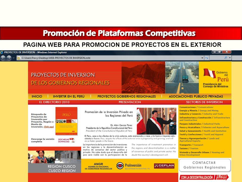 PAGINA WEB PARA PROMOCION DE PROYECTOS EN EL EXTERIOR
